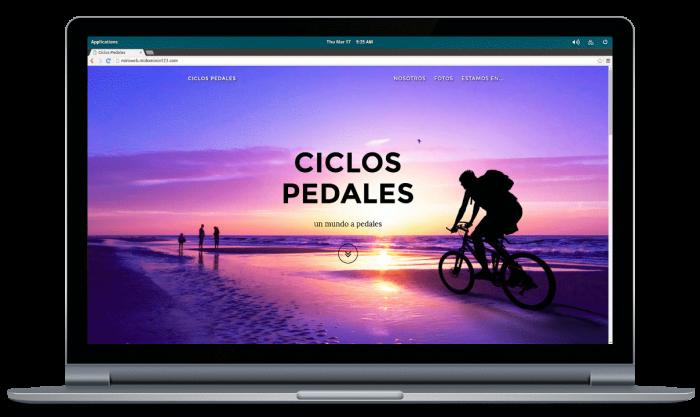miniweb-resultado-netbook